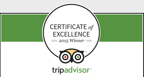 Certificate-of-Excellence-2015-Winner_599x321